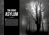 Item image: The Asylum