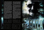Item image: The Salt of Eliza